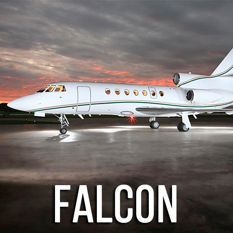 Gallery9Falcon.png